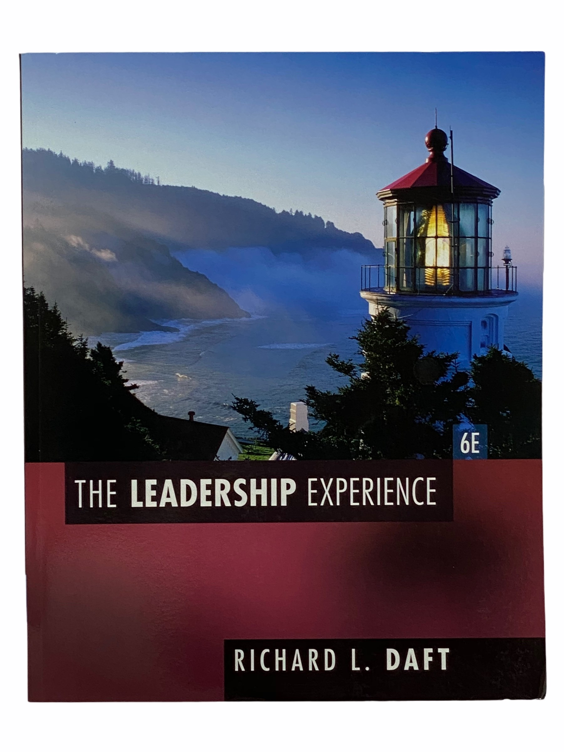 Image for The Leadership Experience
