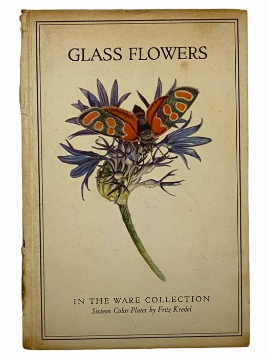 Image for Glass Flowers in the Ware Collection in the Botanical Museum of Harvard University (Insect Pollination Series)