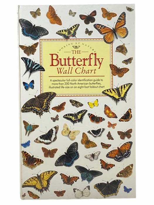 Image for The Butterfly Wall Chart (Looking At Nature)