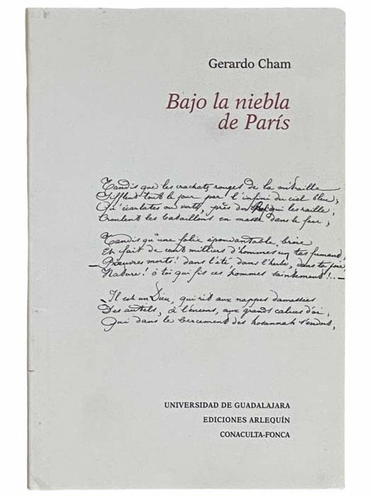 Image for Bajo la Niebla de Paris [Under the Mist of Paris] [SPANISH TEXT]
