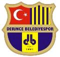 Derincespor logo