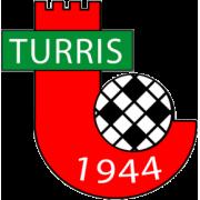 Turris Neapolis logo