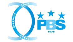 Payas logo