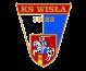 Wisla Pulawy logo