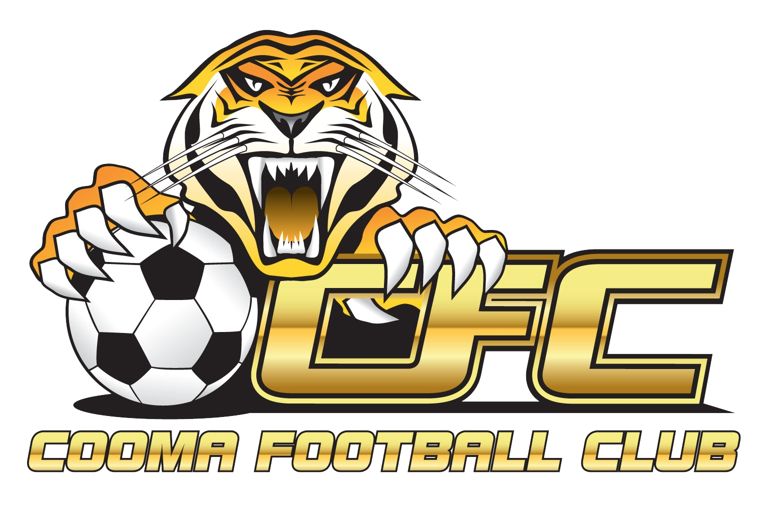Cooma Tigers logo