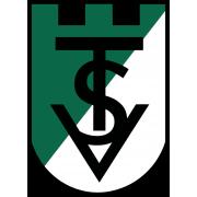 Volkermarkt logo