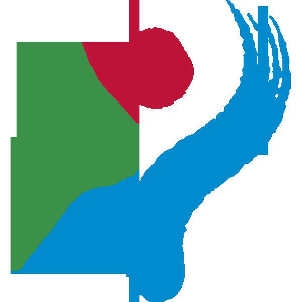 Seoul Amazones W logo