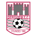 Dergview logo