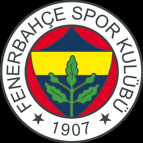 Fenerbahce U-21 logo