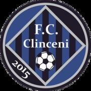 Academica Clinceni logo