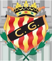 Gimnastic logo