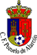 Pozuelo Alarcon logo