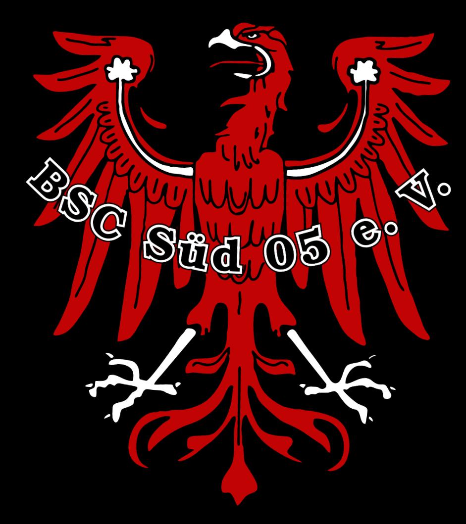 BSC Sud logo