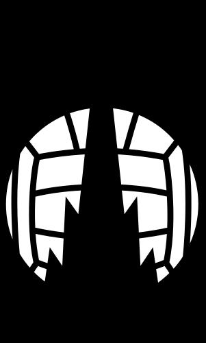 Falkirk U-20 logo