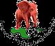 Wikki Tourist logo