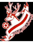 Masfut logo