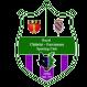 Sporting Chatalet logo