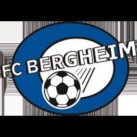 Bergheim W logo