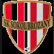 Sokol Brozany logo