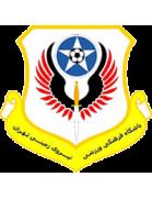 Niroye Zamini logo