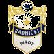 Radnicki Pirot logo