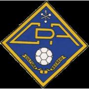 Alcains logo