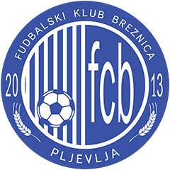 Breznica W logo