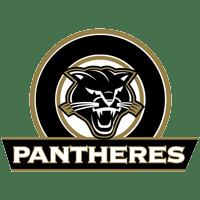 Pantheres logo