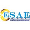 FC Esae logo
