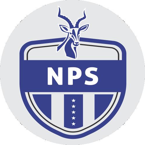 Ngezi Platinum FC logo