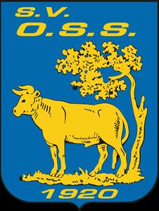 OSS 20 logo