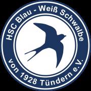 Schwalbe Tundern logo