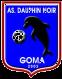 Dauphins Noirs logo