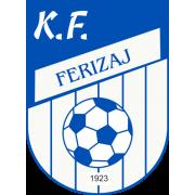 Ferizaj logo
