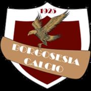 Borgosesia logo