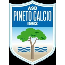 Pineto logo