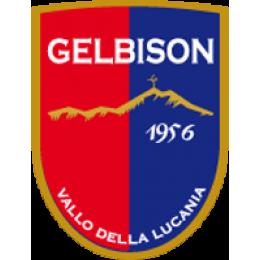 Gelbison logo