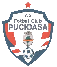 Pucioasa logo