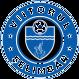 Viitorul Selimbar logo