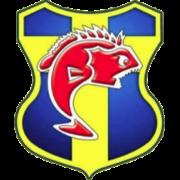 Toulon U-19 logo