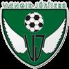 Vaengirs logo