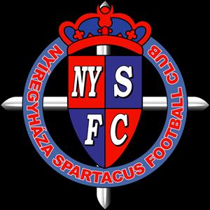 Nyiregyhaza U-19 logo