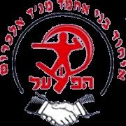 Bnei Majdal Krum United logo