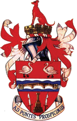 Staines Town logo