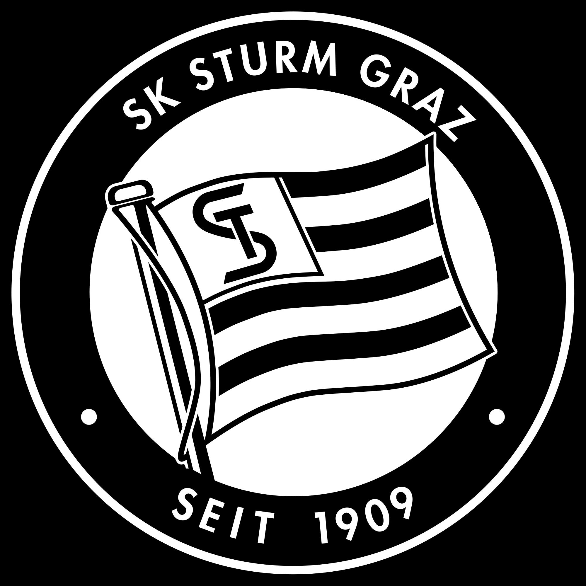 Sturm-2 logo