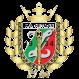 Hetman Zamosc logo