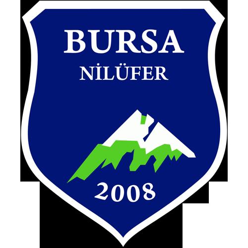 Karacabey Birlikspor logo