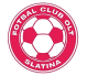 Slatina logo