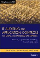 IT Auditing and Application Controls for Small andMid-Sized Enterprises: Revenue, Expenditure, Inventory, Payroll and More