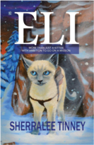 Eli: More Than Just a Kitten with Ambition to Go on a Mission